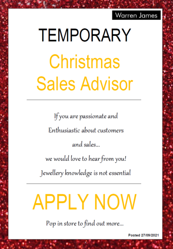 Temporary Christmas Sales Advisor